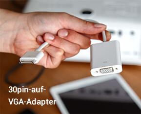 30pin-auf-VGA-Adapter